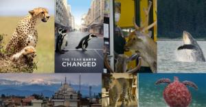 [Review Phim TL] The Year Earth Changed 2021- Năm Trái Đất Hồi Sinh